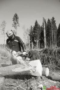 Oregon Gants de protection anti-coupures pour tronçonneuse taille L